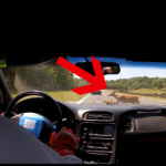 Watch a Racer's Track Day Turn for the Worse When he Hits a Deer