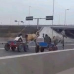 Video: Romanian Highway Traffic Slowed Down By&#8230; A Horse Race!