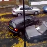 Women-parking-fail