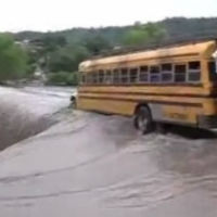 Bus-driver-over-falls